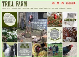Trill Farm's 'mosaic' style website